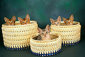 CAT 03 AL0045 01