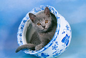 CAT 03 AL0067 01