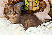 CAT 03 AL0090 01
