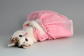 CAT 03 AL0105 01