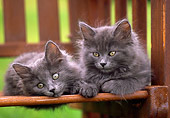 CAT 03 GR0592 01