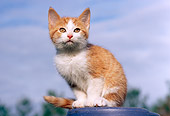 CAT 03 GR0848 01