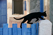 CAT 03 KH0142 01