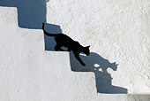 CAT 03 KH0143 01