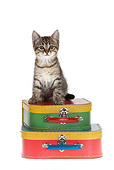 CAT 03 KH0161 01