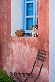 CAT 03 KH0175 01