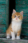 CAT 03 KH0182 01