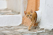 CAT 03 KH0200 01
