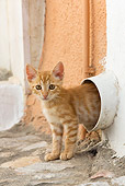 CAT 03 KH0201 01