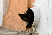 CAT 03 KH0211 01