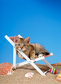 CAT 03 KH0215 01