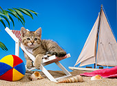 CAT 03 KH0216 01