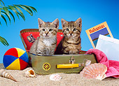 CAT 03 KH0218 01