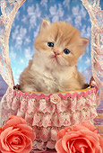 CAT 03 RC0086 01
