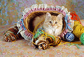 CAT 03 RC0097 01