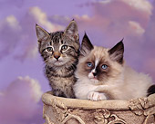 CAT 03 RK0030 01