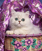 CAT 03 RK0044 01