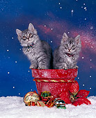 CAT 03 RK0281 03