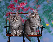 CAT 03 RK0285 08