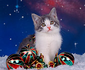 CAT 03 RK0295 02