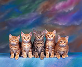 CAT 03 RK0299 12