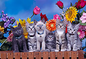 CAT 03 RK0307 03