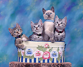 CAT 03 RK0310 02