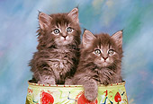 CAT 03 RK0356 03