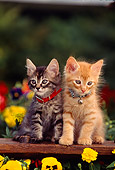 CAT 03 RK0540 09
