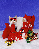 CAT 03 RK0624 01