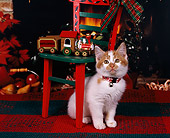 CAT 03 RK0631 03