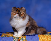CAT 03 RK0674 03