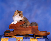 CAT 03 RK0675 03