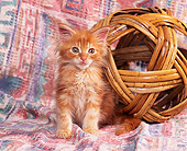CAT 03 RK0747 01
