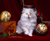 CAT 03 RK0857 02