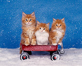 CAT 03 RK0879 03