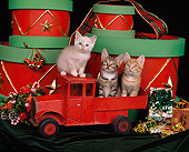 CAT 03 RK0889 07