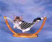 CAT 03 RK0950 09