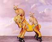 CAT 03 RK0961 01
