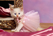 CAT 03 RK1027 03