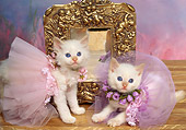 CAT 03 RK1027 11