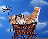 CAT 03 RK1110 03