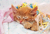CAT 03 RK1352 12