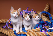 CAT 03 RK1395 05
