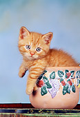 CAT 03 RK1412 07