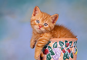 CAT 03 RK1412 11