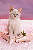 CAT 03 RK1438 04
