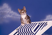CAT 03 RK1585 06