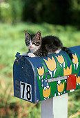 CAT 03 RK1722 02