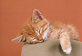 CAT 03 RK1747 05